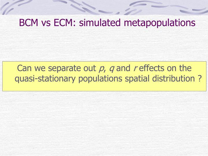 BCM vs ECM: simulated metapopulations