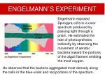 engelman n s experiment