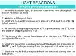 light reactions2