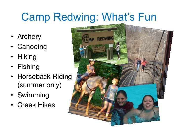 Camp Redwing: What's Fun