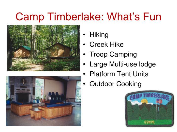 Camp Timberlake: What's Fun