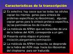 caracter sticas de la transcripci n