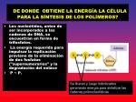de donde obtiene la energ a la c lula para la s ntesis de los pol meros
