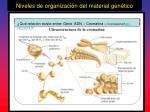 niveles de organizaci n del material gen tico