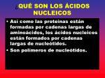 qu son los cidos nucleicos