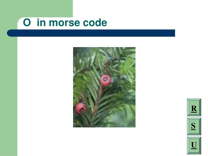 O  in morse code