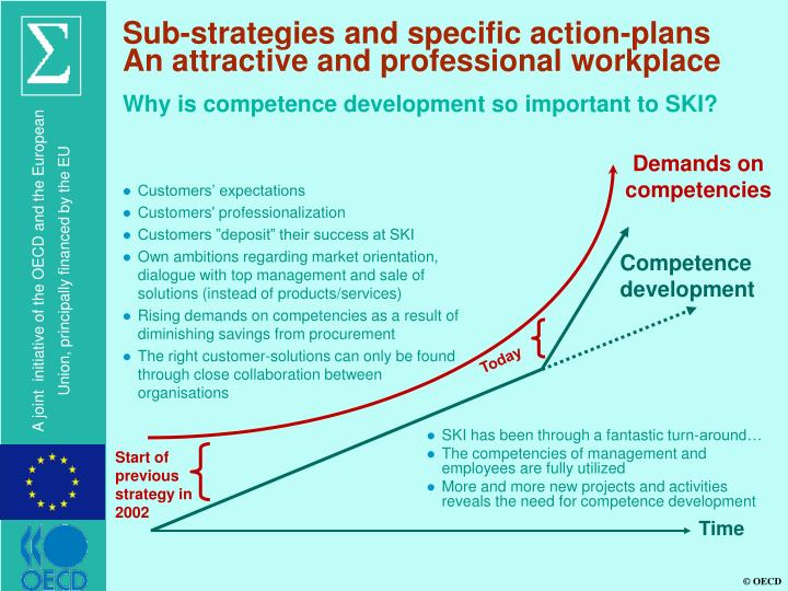 Sub-strategies and specific action-plans