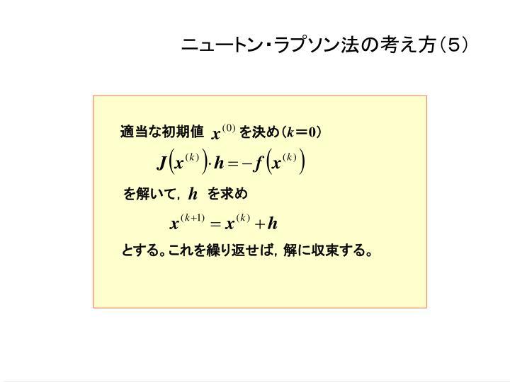 ニュートン・ラプソン法の考え方(5)