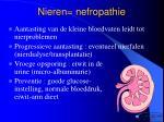 nieren nefropathie