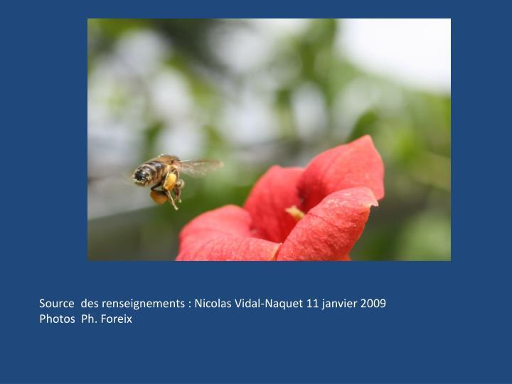 Source  des renseignements : Nicolas Vidal-