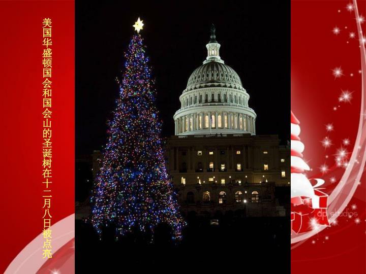 美国华盛顿国会和国会山的圣诞树在十二月八日被点亮