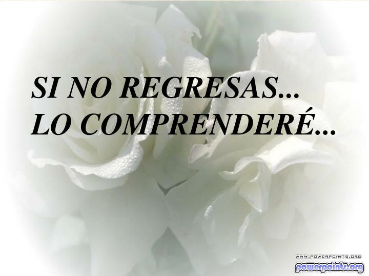 SI NO REGRESAS...