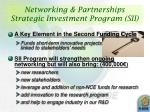 networking partnerships strategic investment program sii