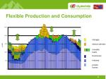 flexible production and consumption