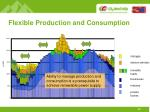 flexible production and consumption1