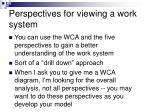 perspectives for viewing a work system1