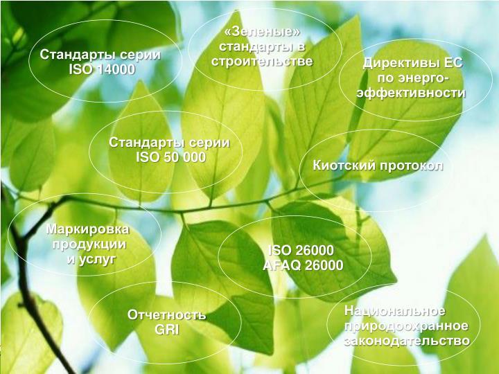 «Зеленые»
