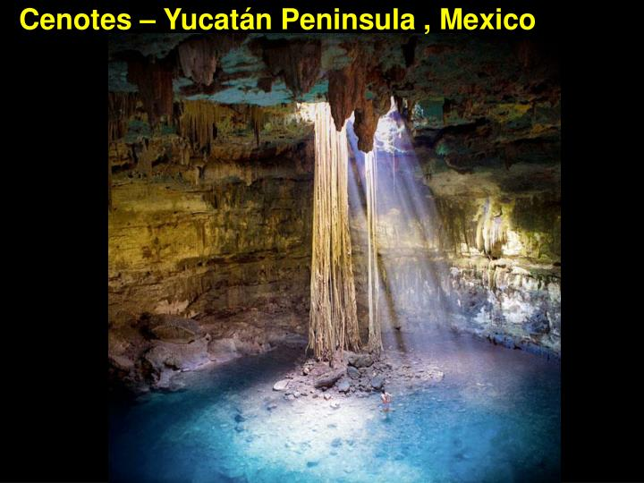 Cenotes – Yucatán Peninsula , Mexico