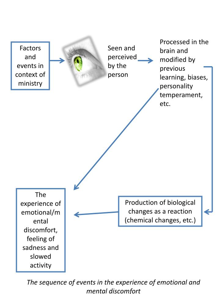 Processed in the brain and modified by previous learning, biases, personality temperament, etc.