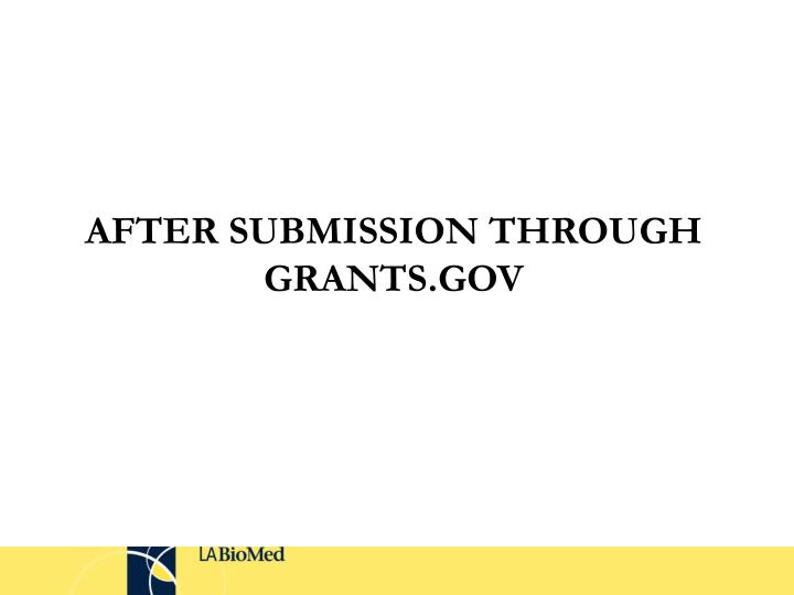 AFTER SUBMISSION THROUGH GRANTS.GOV
