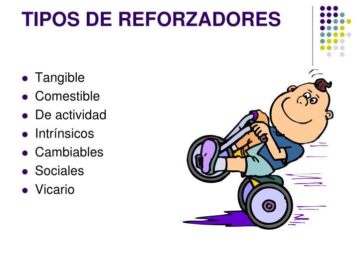 TIPOS DE REFORZADORES
