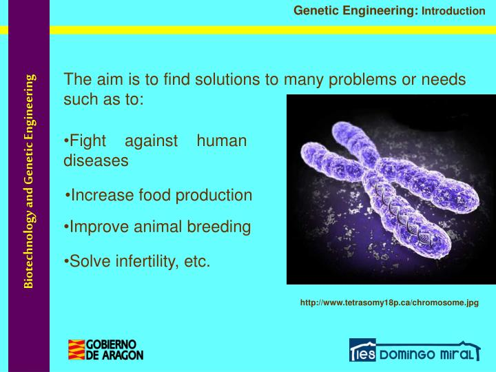 a discussion on genetic engineering and some of its problems So why are there so many protests to genetic engineering the problems  with its large internal surface  on some of the implications of genetic findings and.