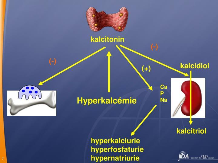kalcitonin