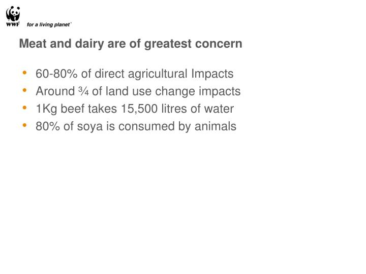 Meat and dairy are of greatest concern