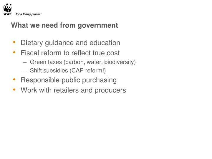 What we need from government