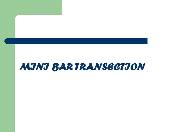MINI BAR TRANSECTION