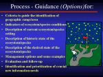 process guidance options for