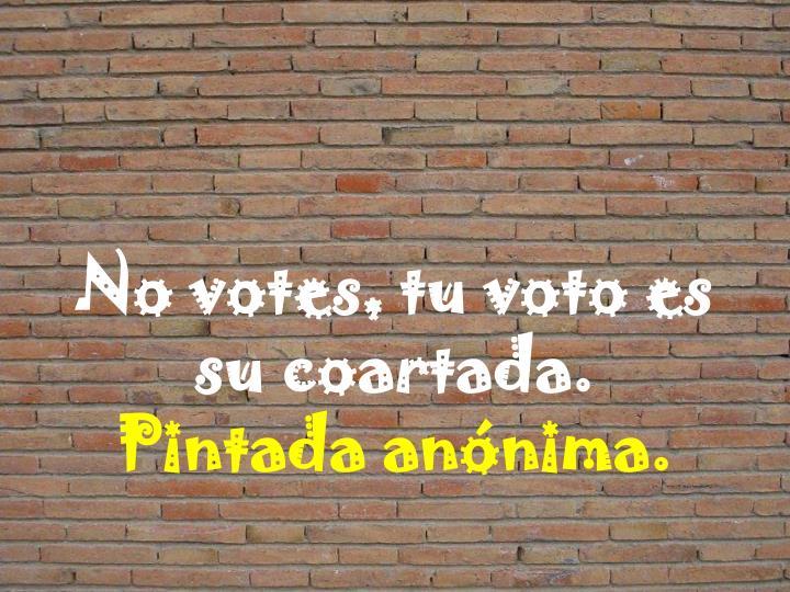 No votes, tu voto es su coartada.