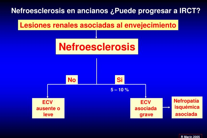 Nefroesclerosis en ancianos ¿Puede progresar a IRCT?