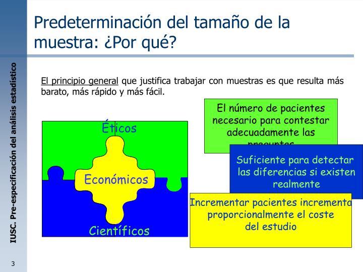 Predeterminaci n del tama o de la muestra por qu