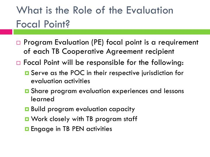 What is the Role of the Evaluation Focal Point?