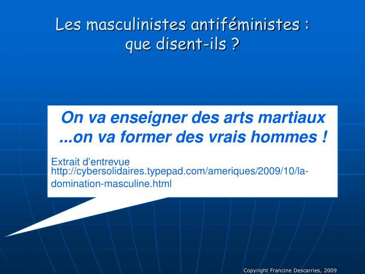 Les masculinistes antiféministes :