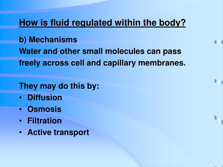 How is fluid regulated within the body?