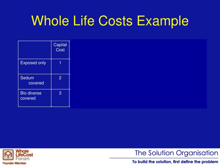 Whole Life Costs Example