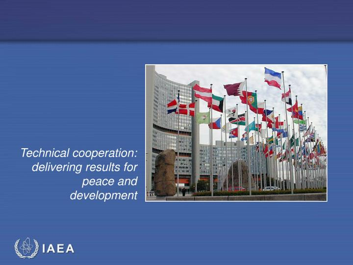 Technical cooperation: delivering results for peace and development