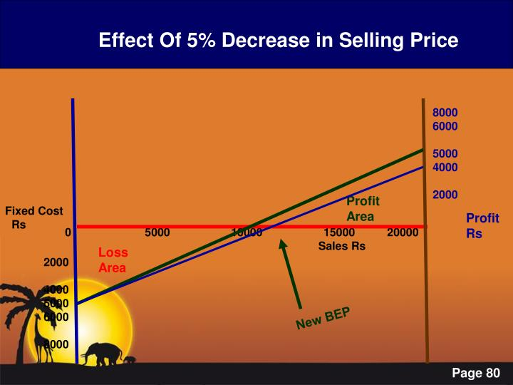 Effect Of 5% Decrease in Selling Price