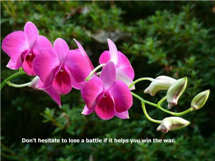 Don't hesitate to lose a battle if it helps you win the war.