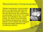 revolutionary consciousness
