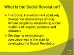 what is the social revolution1