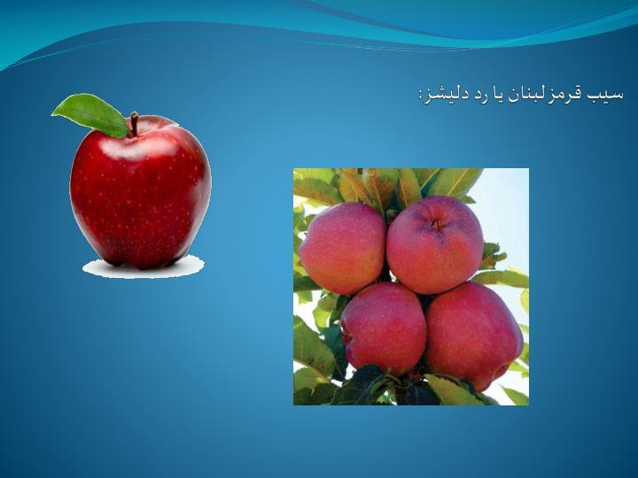سيب قرمز لبنان يا رد دليشز: