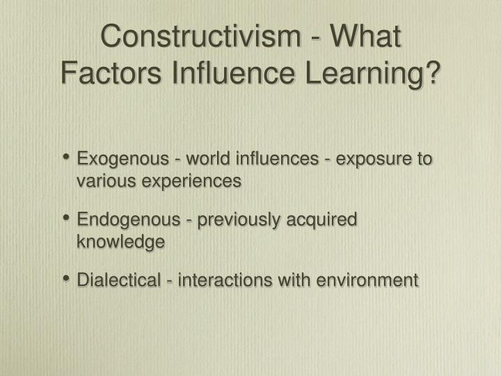 Constructivism - What Factors Influence Learning?
