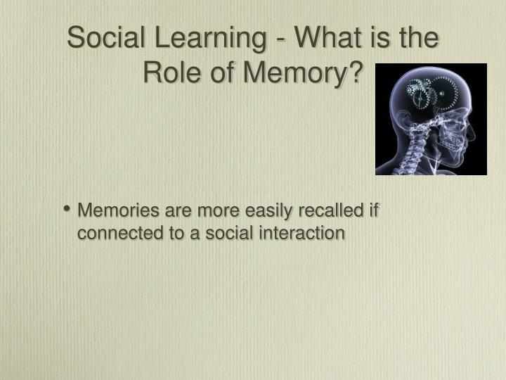 Social Learning - What is the Role of Memory?