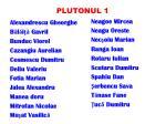 plutonul 1