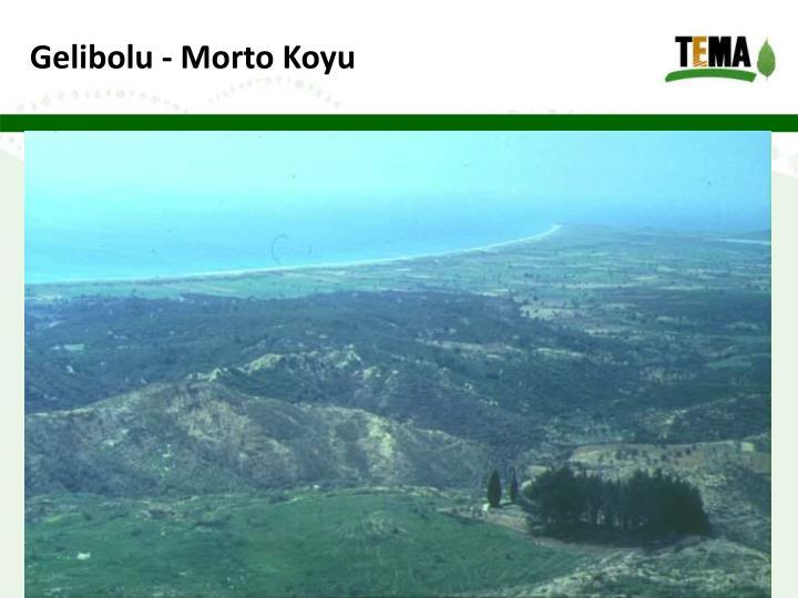 Gelibolu - Morto Koyu
