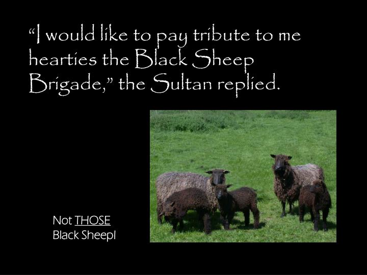"""""""I would like to pay tribute to me hearties the Black Sheep Brigade,"""" the Sultan replied."""