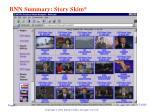 bnn summary story skim